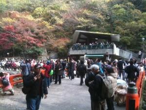 箕面滝道2010.11.25
